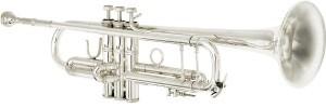 Bach Stradivarius 180S Series