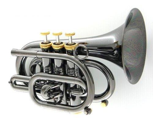 CAROL CPT-3000-GLS