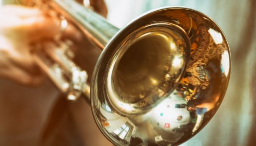 How to Choose a Professional Trumpet?