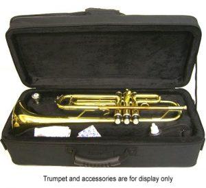 Sky Trumpet Case