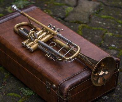 trumpet_cases