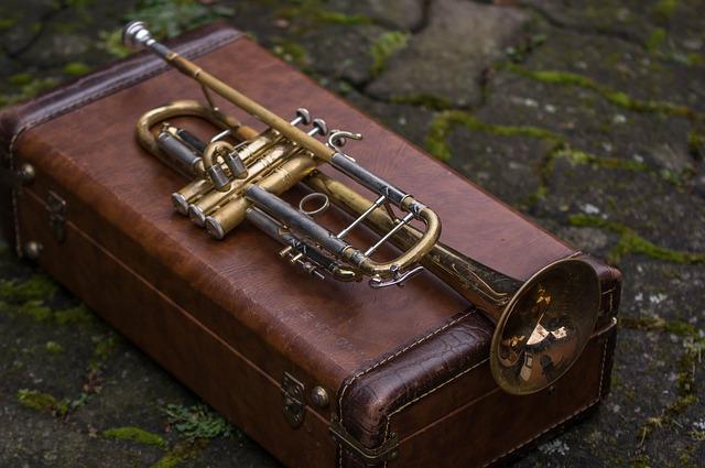 Trumpet Case